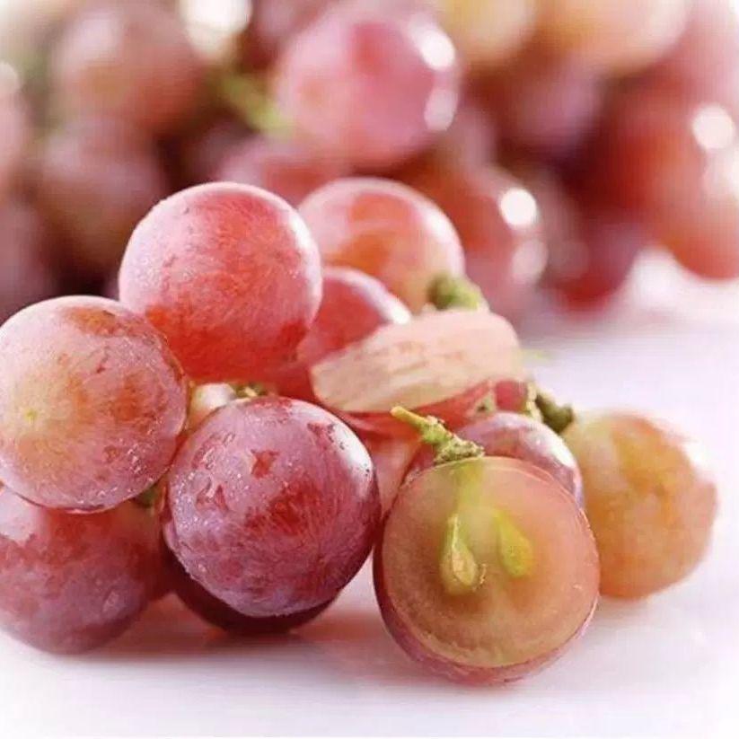 88805-红提葡萄新鲜水果非红宝石克伦生葡萄当季新鲜水果脆甜包邮-详情图
