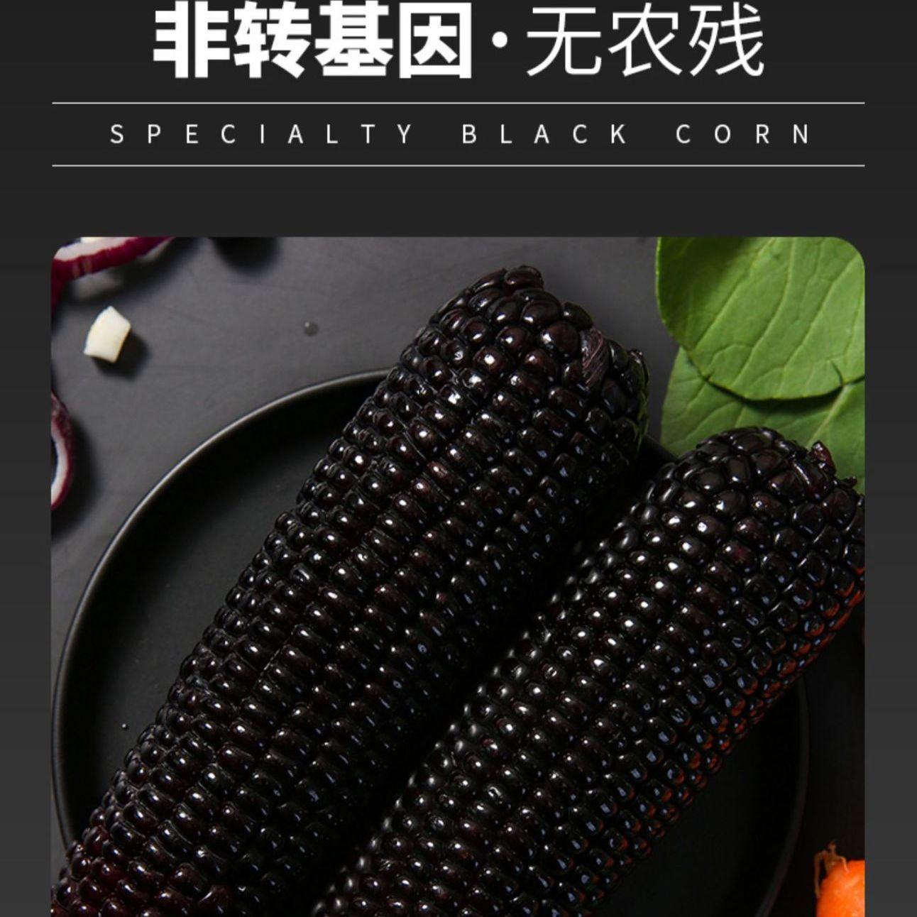 88825-东北黑玉米新鲜甜糯非转基因真空包装自热速食黑黏苞米棒整箱批发-详情图