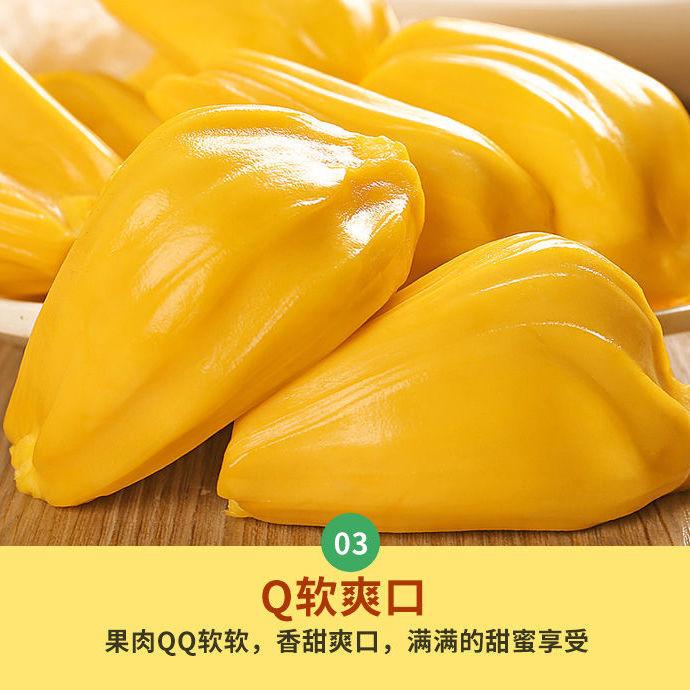 现摘发货海南三亚菠萝蜜新鲜水果当应季一整个黄波罗蜜批发非红肉主图4