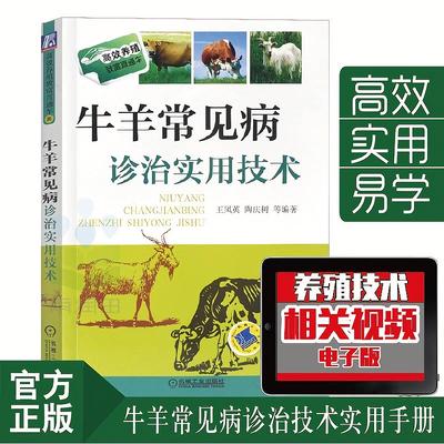 牛羊常见病诊治实用技术 高效养牛羊科学养牛规模化养殖兽医书籍